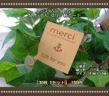 【ASHIATOYA】オリジナルマリン柄カード(ベージュ)