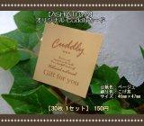 【ASHIATOYA】オリジナルCuddlyカード(ベージュ)