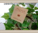 【HAPPY!】[ASHIATOYA]オリジナル王冠カード(アイボリー)