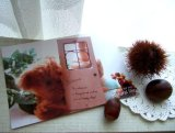 【ASHIATOYA】オリジナルポストカード『ちびくま』